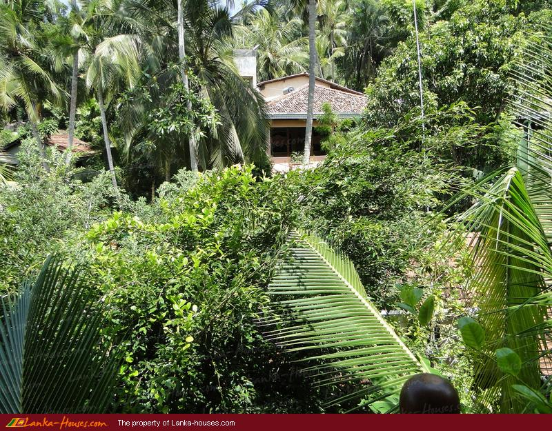 Thambapanni Retreat, Unawatuna, Galle, South, Sri Lanka, Online ...