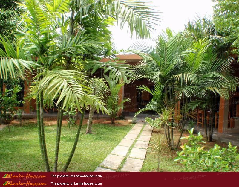 House garden design in sri lanka home design and style for Garden designs sri lanka