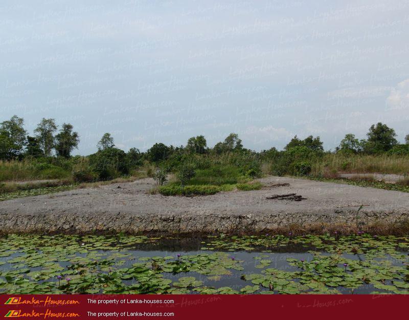 Land On The Lake In Panadura Panadura Kalutara West Sri Lanka Online Reservation