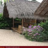 MANGROVE GARDEN and BEACH CABANAS