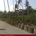 Beach land with house for sale in Ahangama. 45 perch.