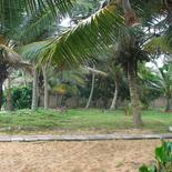 Beach land in Boosa, Rathgama