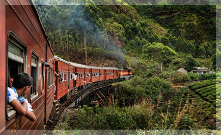 Nuwara Eliya train ride